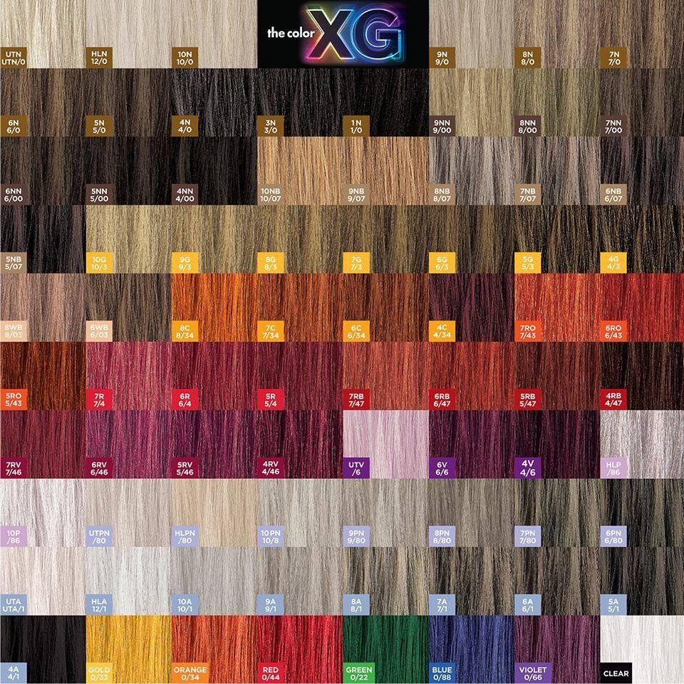 Tinte Permanenti The Color Xg